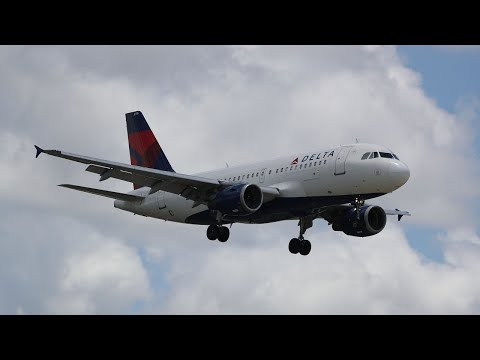 Delta tightens emotional support animal policy
