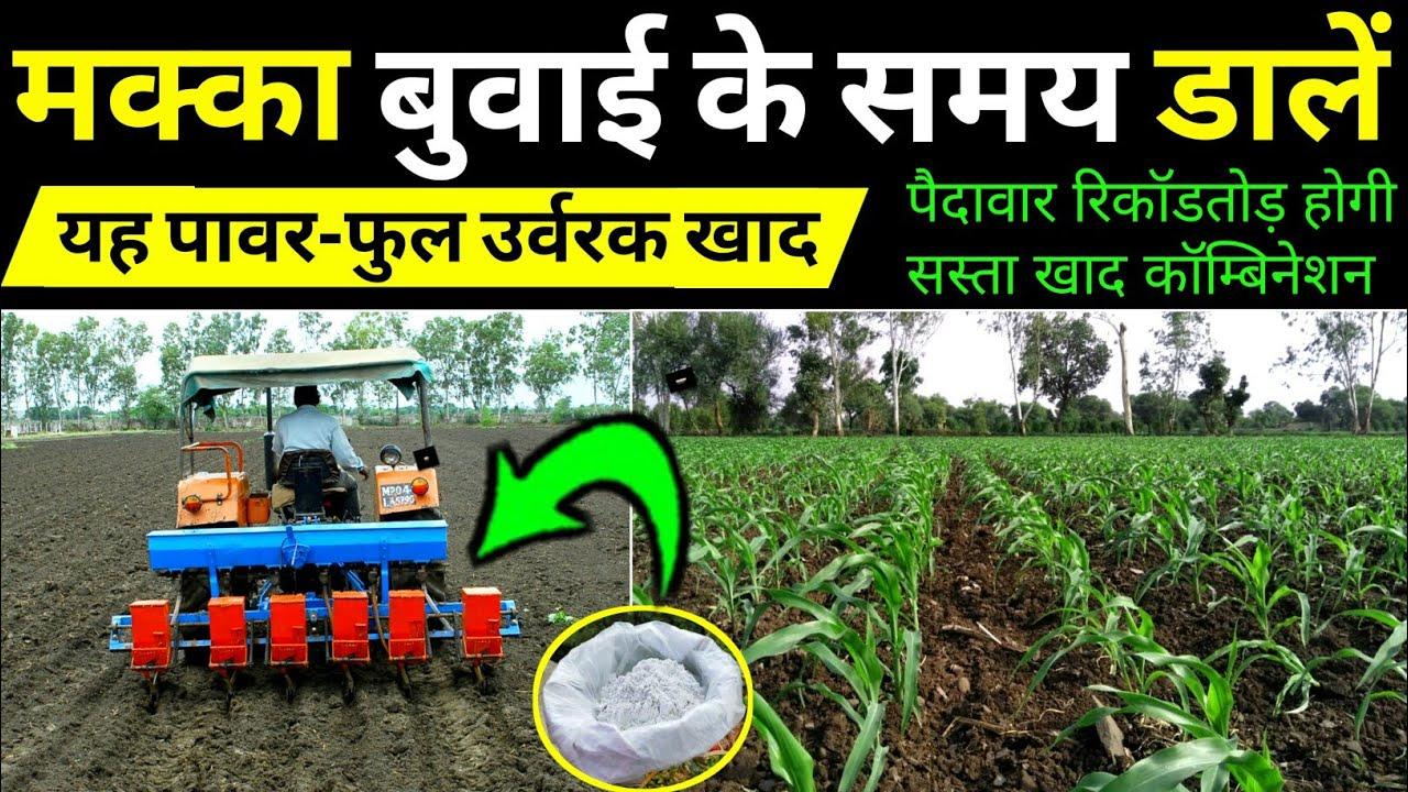 Makka ki kheti | वुबाई के समय उर्वरक खाद | मक्का की खेती | Advance agriculture