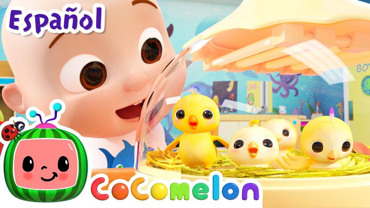 CoComelon en Español | Aprendiendo los Los números | Canciones Infantiles y de Cuna