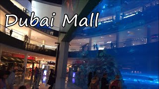 Inside The World's Largest Shopping Mall / Dubai Mall