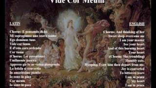 Vide Cor Meum - original libretto in Italian / latin with translation.