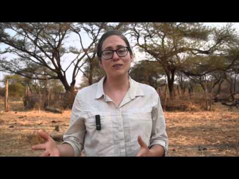 Lent Event Week 1: Muzarabani, Zimbabwe Livelihoods