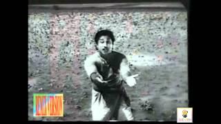 Manaparai Maadu katti Remix Song