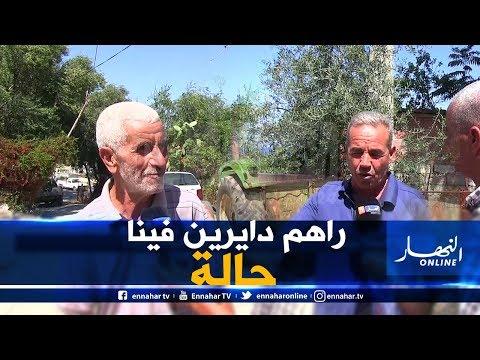 صريح جدا: غزو القردة.. يهدد ممتلكات وحياة سكان قرية العوانة بجيجل !!