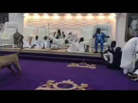See what happens when presidential Aspirant Omoyele Sowore storms Ooni of Ife's Palace #5