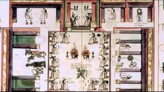 Ciudad de Dioses T1 - 07. La vida en las chinampas
