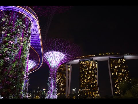 Beautiful Places & Things to do in Singapore HD