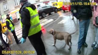 Напад пітбультер'є́ра на патрульних Львова