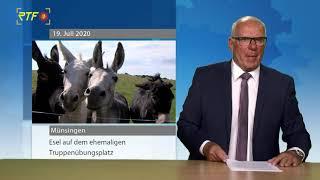 Eselherde auf dem Truppenübungsplatz Münsingen soll neue Bodenstrukturen schaffen