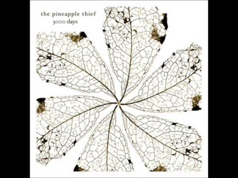 Pineapple Thief -  We Love You