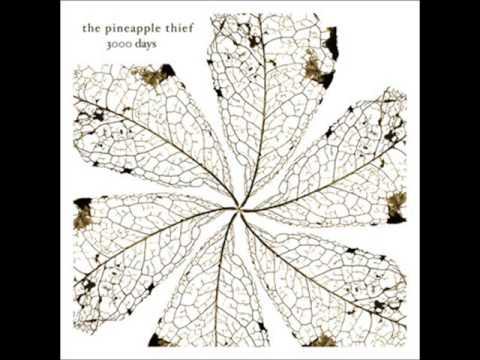 Pineapple Thief -  We Love You