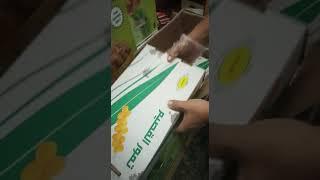 Kurma Raja Sukari Sukkari Kemasan 3 Kg Asli Original Oleh Oleh Haji Umroh Murah
