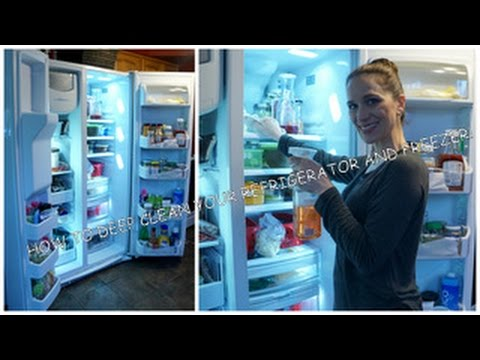 How to Deep Clean your Refrigerator & Freezer Quick!