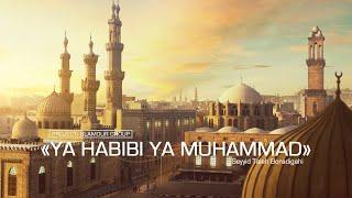 YA HABIBI YA MUHAMMAD - Seyyid Taleh Boradigahi   Cover: Glamour Ensemble Resimi