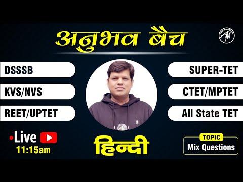 हिन्दी व्याकरण | MIX MCQ | CTET REET MPTET KVS DSSSB UPTET  SUPER-TET | Class-1 | Rahul Sir