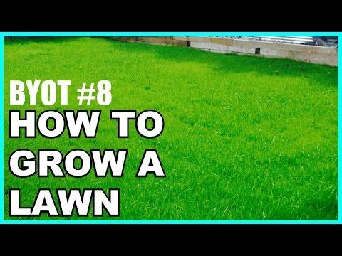 DIY: Yard/Lawn Restoration – BYOT #8