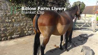 How to Clip - Blanket Clip