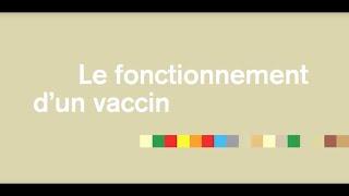 Le Fonctionnement D'un Vaccin