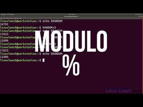 Random Number Variable In BASH - Linux Commands