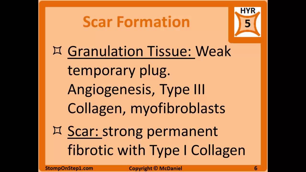 Non-Infectious Granulomatous Diseases of the Skin