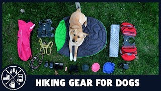 What hiking gear your dog really needs?