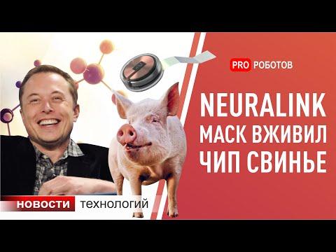 Neuralink/Нейролинк Илона Маска: новый чип и новости с презентации. Новейшие роботы и технологии