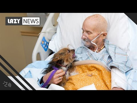 Tony Sandoval on The Breeze - Vietnam Veteran alone in Hospice reunites with beloved Dog one Last Time