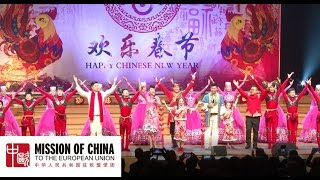 2017 Chinese New Year celebration in Brussels