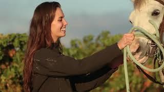 Galileia: Maravilhas da Natureza, Vídeo 2 - Ministério do Turismo de Israel