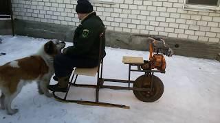 Снегоход из детских лыж и бензопилы Урал.