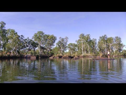 Rainbow Fish Filmed In Their Natural Habitat. - The Kimberley Western Australia