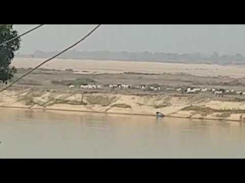 Fulani Herdsmen smuggling arms at the bank of River Niger