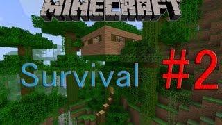 Minecraft Survival part 2 -Het Huis- (Dutch)