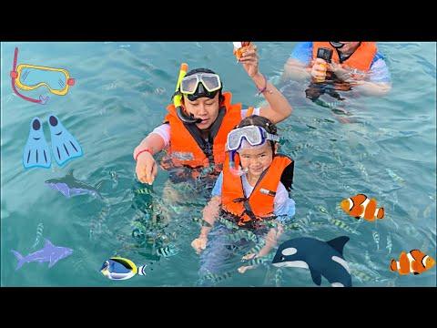 3 Islands ดำน้ำเกาะช้าง ทริปครึ่งวัน 3 เกาะ เพิ่มพูลทรัพย์ Snorkeling Tour Koh Chang