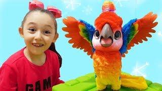 Öykü's Funny Colored Friend Parrot - Funny Oyuncak Avı