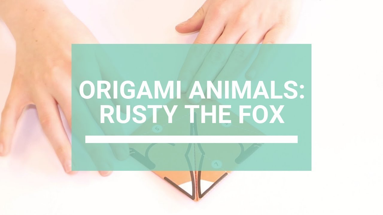 The Complete Book of Origami: Step-by Step Instructions in Over ... | 720x1280