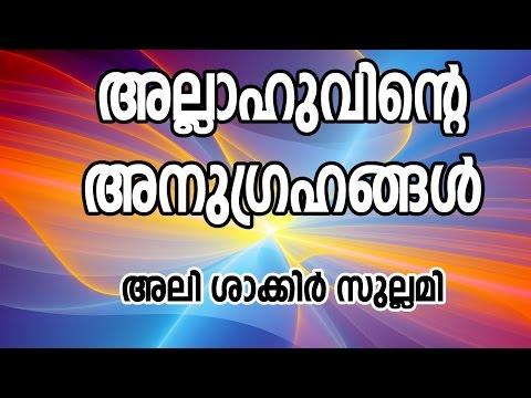 അല്ലാഹുവിന്റെ അനുഗ്രഹങ്ങൾ :അലി ശാകിർ മുണ്ടേരി | CD TOWER CALICUT