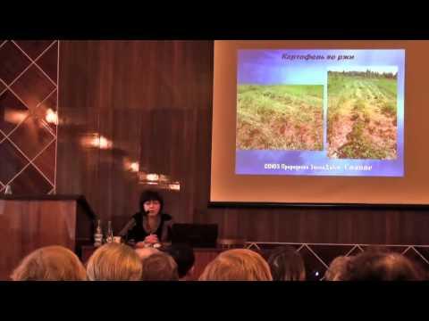 Опыт природного земледелия на Северо-Западе
