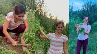 Rubina Dilaik enjoying gardening with her husband Abhinav Shukla during the quarantine in hometown