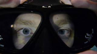 Pupil constriction, an adaption to improve underwater vision