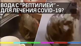 Лекарство от COVID 19 с мертвой рептилией продавали в аптеке Москвы