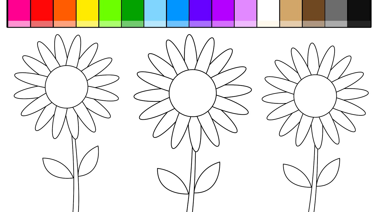 Learn Colors for Kids and Color Sunflowers Coloring Pages - YouTube