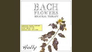 Holly EFT Dose Therapy (Binaural Real Frequency from Bach Flowers)