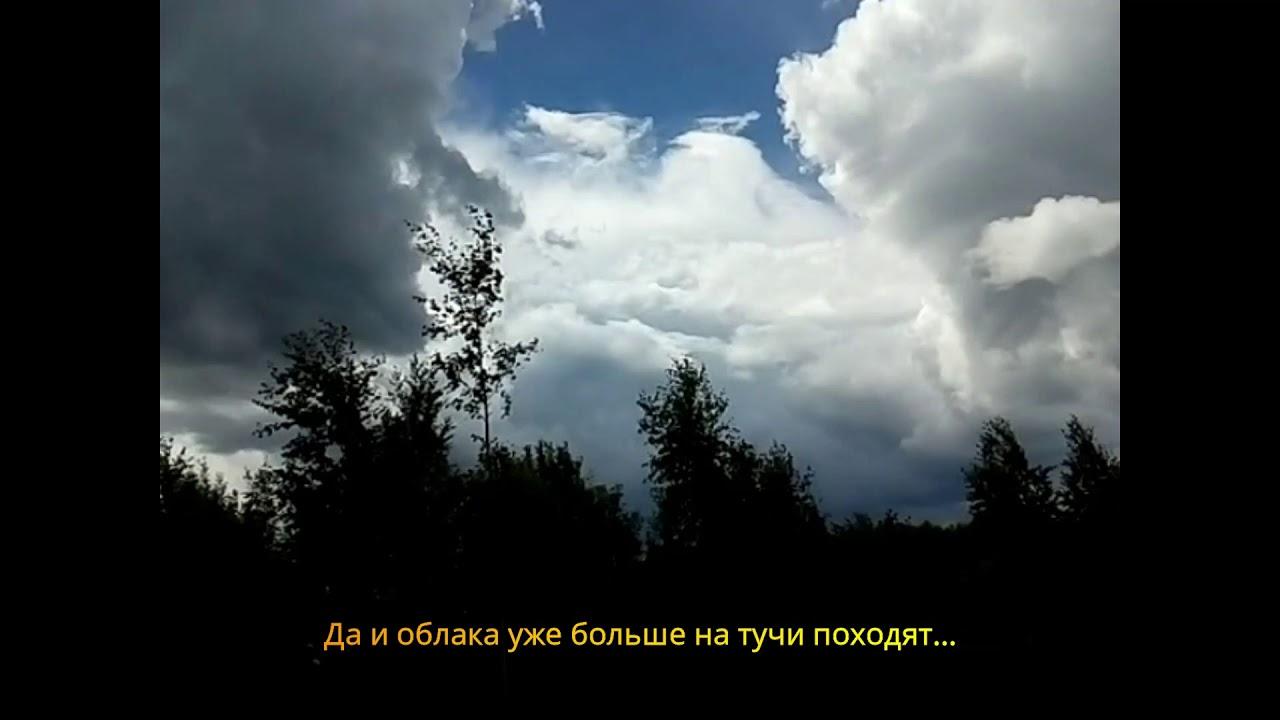 Природа, лето, июль 2019 года. Лес, гроза, дождь и радуга ...
