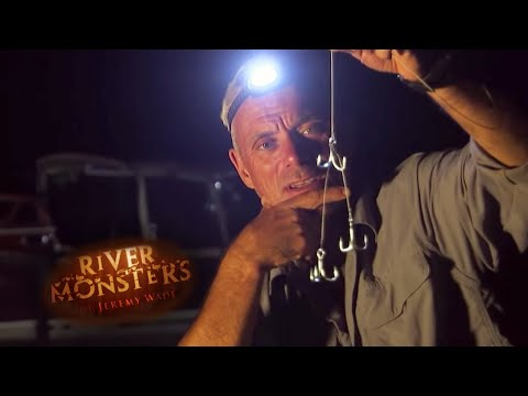 How To Track A Goliath Tigerfish | TIGERFISH | River Monsters