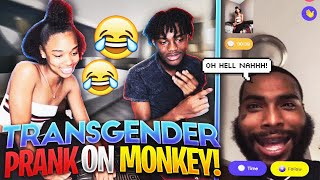 SWITCHING VOICE PRANK ON MONKEY APP!