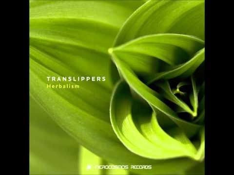 Translippers - Herbalism [Full Album]
