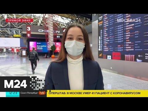 Куда мечтают отправиться российские путешественники - Москва 24