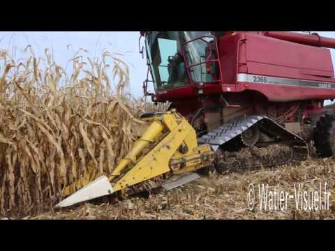 Récolte de maïs grain avec une Moissonneuse Case IH 2366 équipée de chenilles