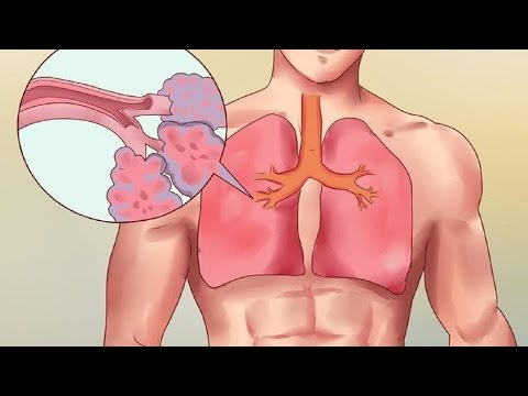 Add 3 Drops Of Oregano Oil To Water And See What Happens To Your Lungs | Oregano Oil Health Benefits